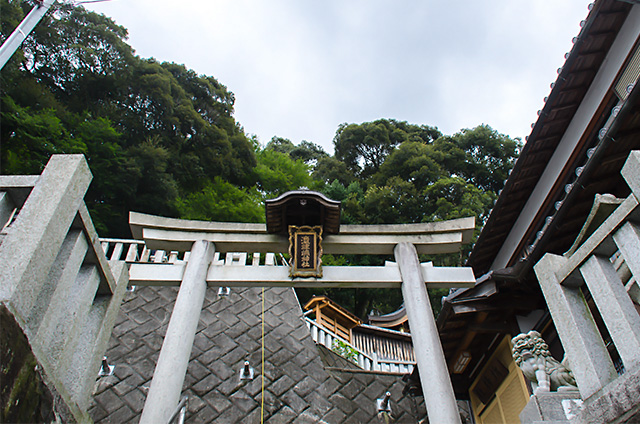 okishima004.jpg