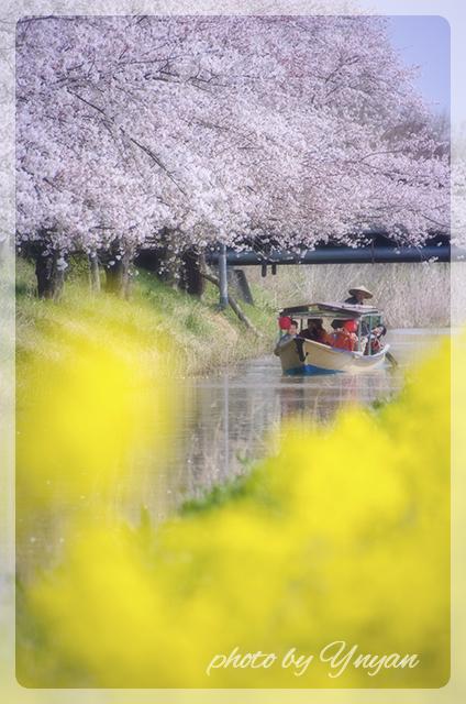 omihachiman2.jpg